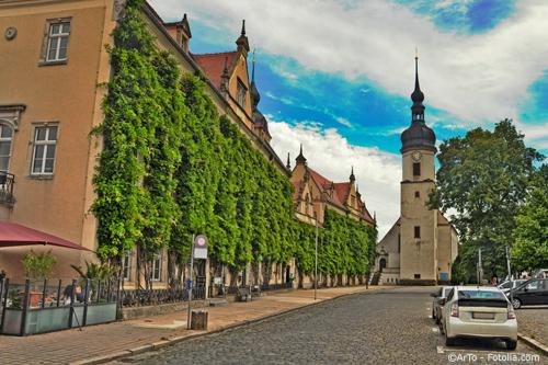 Der mit Efeu begrünte Rathausplatz in Riesa mit umliegenden Immobilien