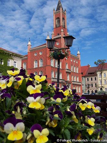 Rathaus Kamenz mit umliegenden Wohnungen